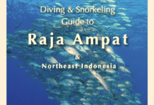 New Dive, Snorkeling Guide To Raja Ampat, Northeast Indonesia Released