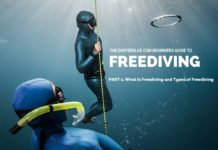 Beginners Guide to Freediving_ PART 1 - What is Freediving and Types of Freediving