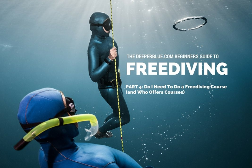 Beginners Guide to Freediving_ PART 4 - Do I Need To Do a Freediving Course (and Who Offers Courses)