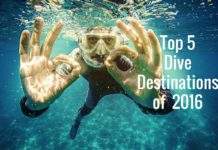 Top 5 Dive Destinations of 2016