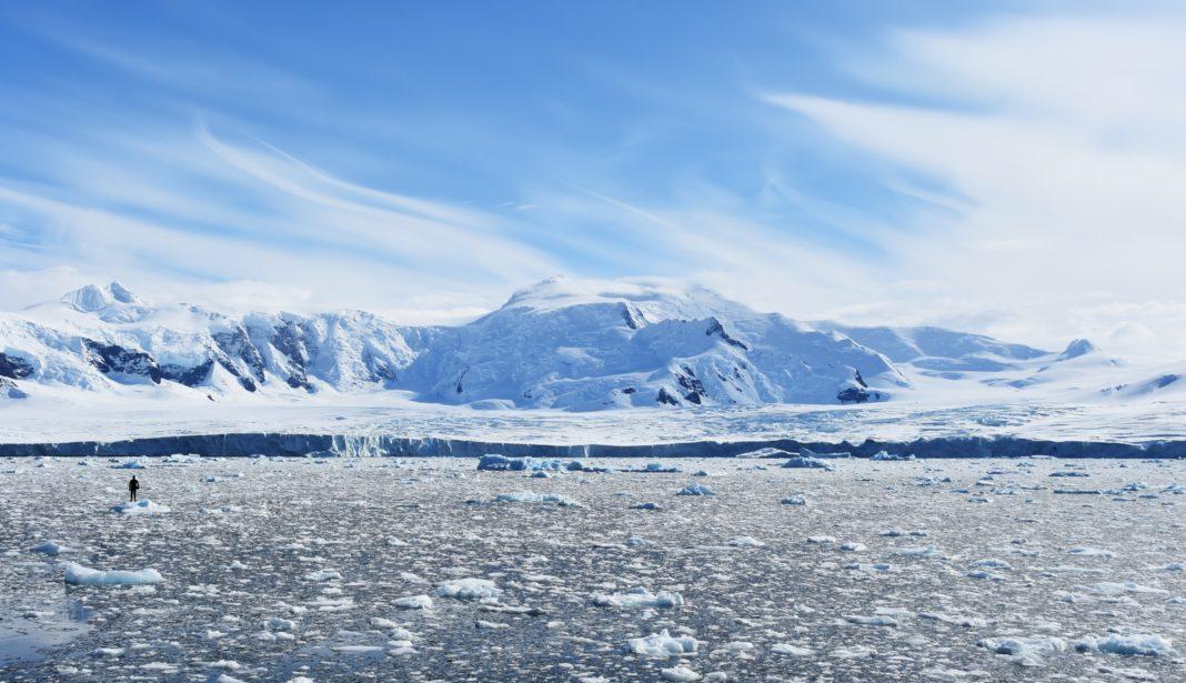 Freedive Antarctica - Will On Ice Looking At Glacier