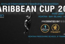 Caribbean Cup 2016