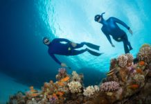 Two free divers swimming over vivid coral reef in the Red Sea. Egypt