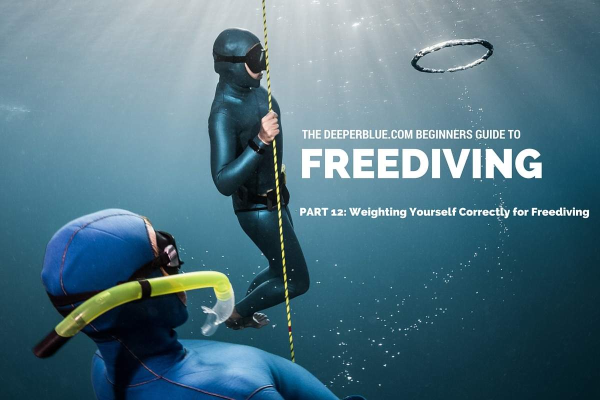 Beginners Guide to Freediving_ PART 12 - Weighting Yourself Correctly for Freediving