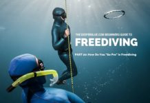 Beginners Guide to Freediving_ PART 20 - How Do You _Go Pro_ in Freediving