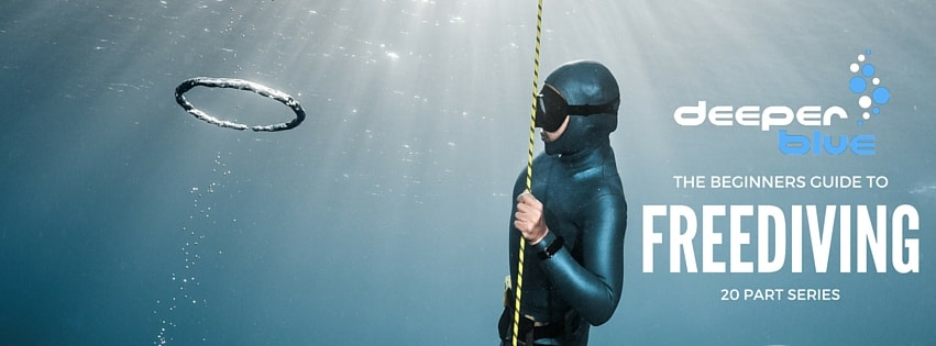 The Beginners Guide To Freediving