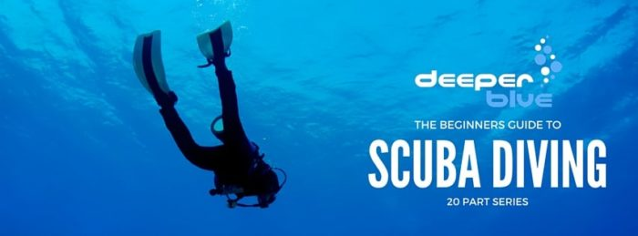 DeeperBlue.com - The Beginners Guide to Scuba Diving - Banner