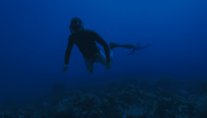 Nestor: 'It took me a book to really figure [freediving] out.'