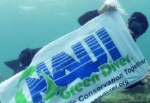 NAUI Green Diver Initiative Planning Big Harbor Clean-Up In Florida