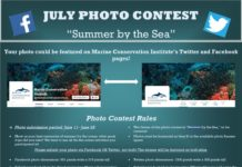 The Marine Conservation Institute is holding a 'Summer By The Sea' photo contest.