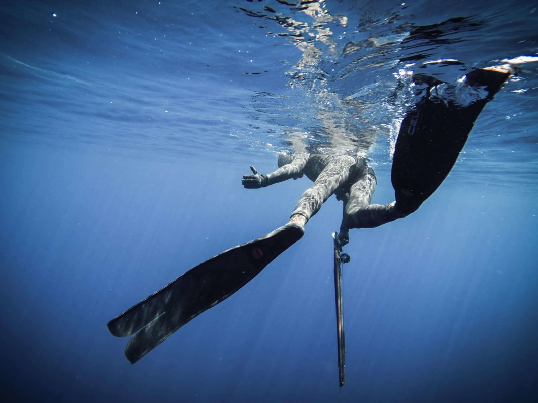 The Bright Side of Deep Spearfishing: The Reef 2