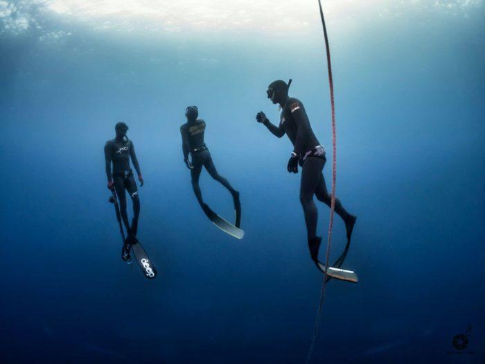 SAI (Spearfishing Academy International) is a brand new global Spearfishing Education Organization