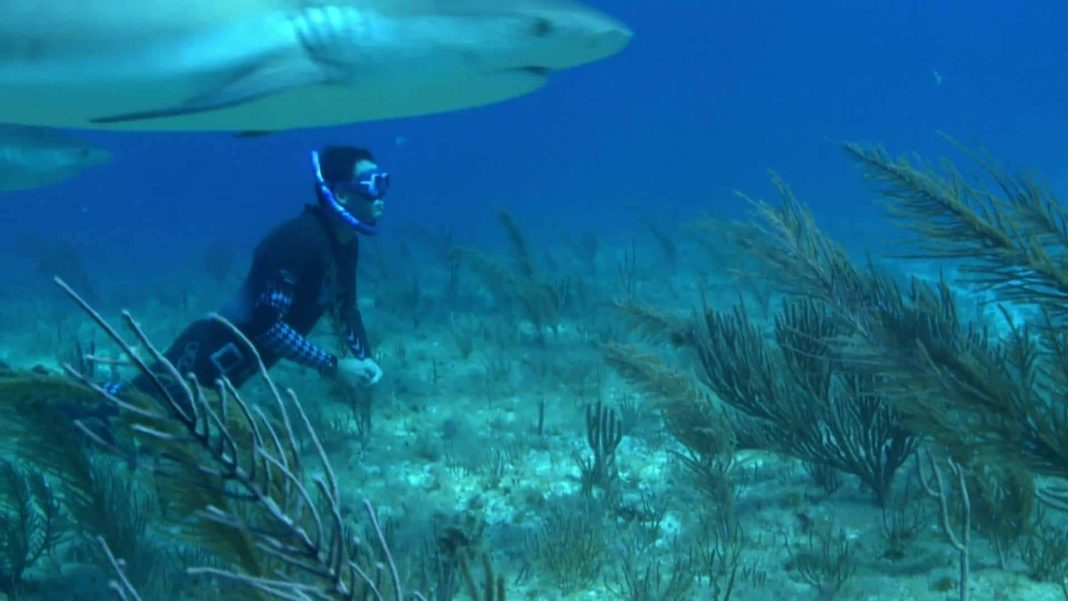 """Freediving Documentary """"On A Long Breath"""" Released 2"""