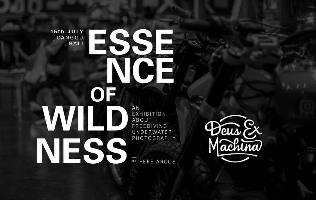 The Essence of Wildness - Deus Ex Machina