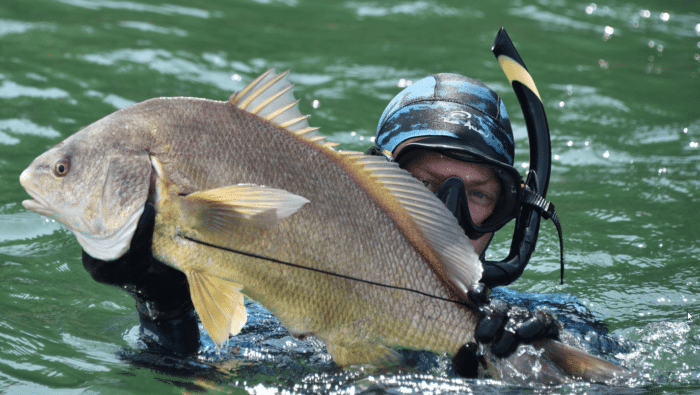 2016 USOA National Spearfishing Championship (Photo Credit: Dale Sanders)