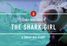 Braving the Waters of Bimini with Shark Girl - YouTube