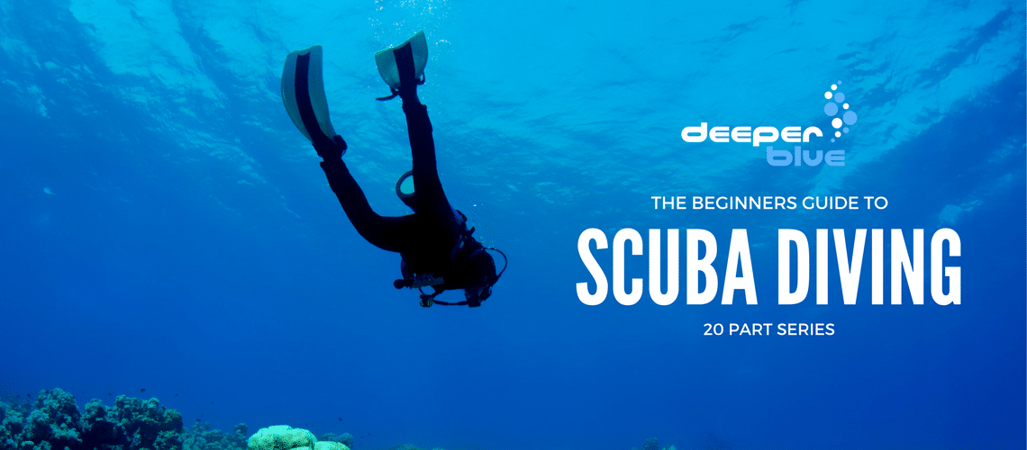 DeeperBlue.com - The Beginners Guide to Scuba Diving