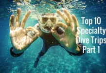 Top 10 Specialty Dive Trips - Part 1