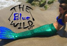 The Blue Wild Expo 2017