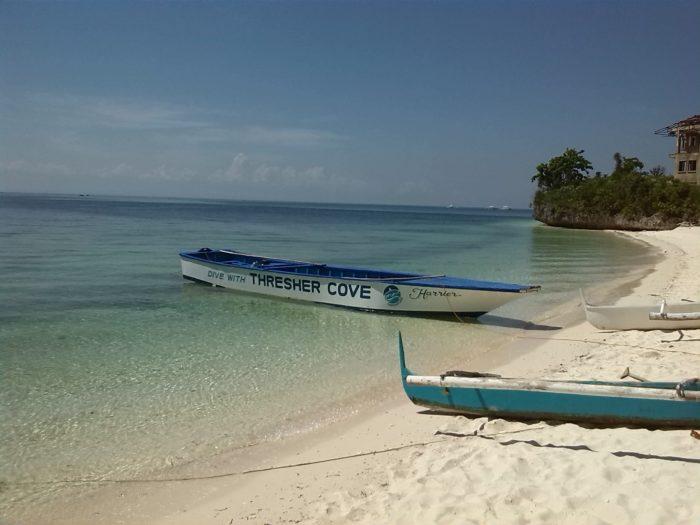 Malapascua island thresher shark dives
