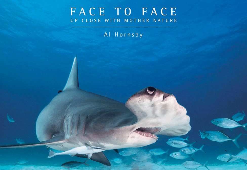 Writer/Photographer Al Hornsby has released 'Face To Face', a book chock-full of underwater photos