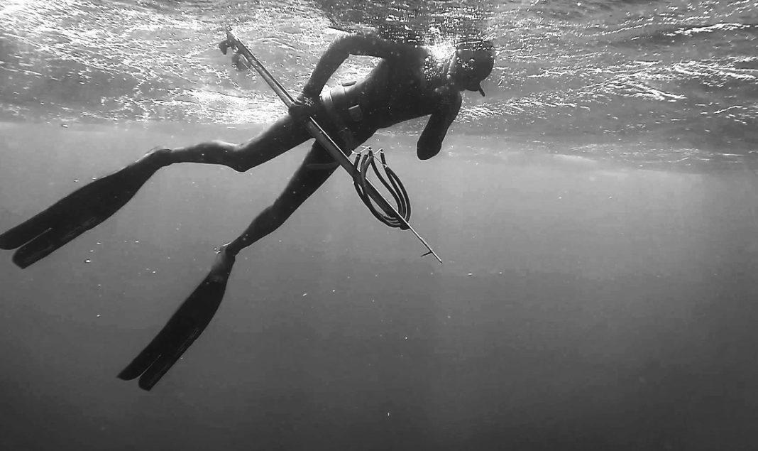 (you) Hold, Dive, Shoot: Virtual Spearfishing Training 2