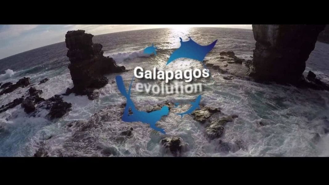 Freediving And Scuba Diving Ambassadors Heading To The Galapagos 2