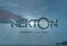 Check Out Nekton's 360-Degree Virtual Reality Videos Of The Marianas Trench