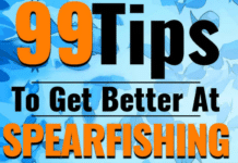 99 Tips to get better at Spearfishing eBook cover