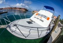 Neal Watson's Bimini Scuba Center Offering 'AfterMath(ew) Special' Dive Packages