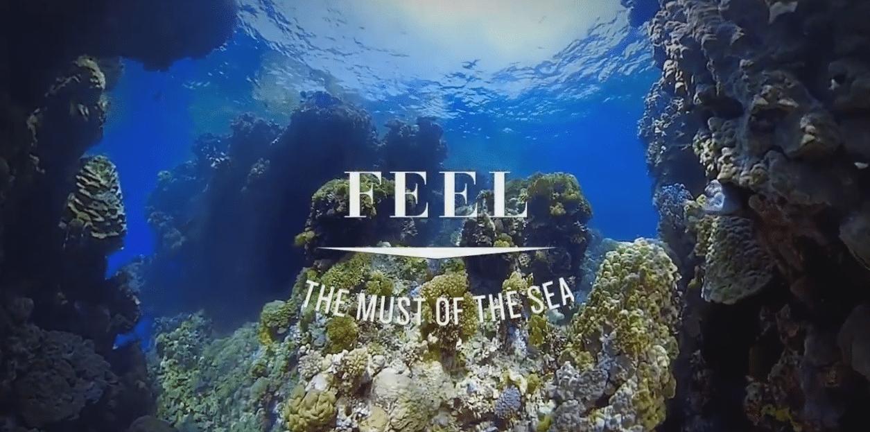 View Your Next Dive Trip Via PADI's New VR App
