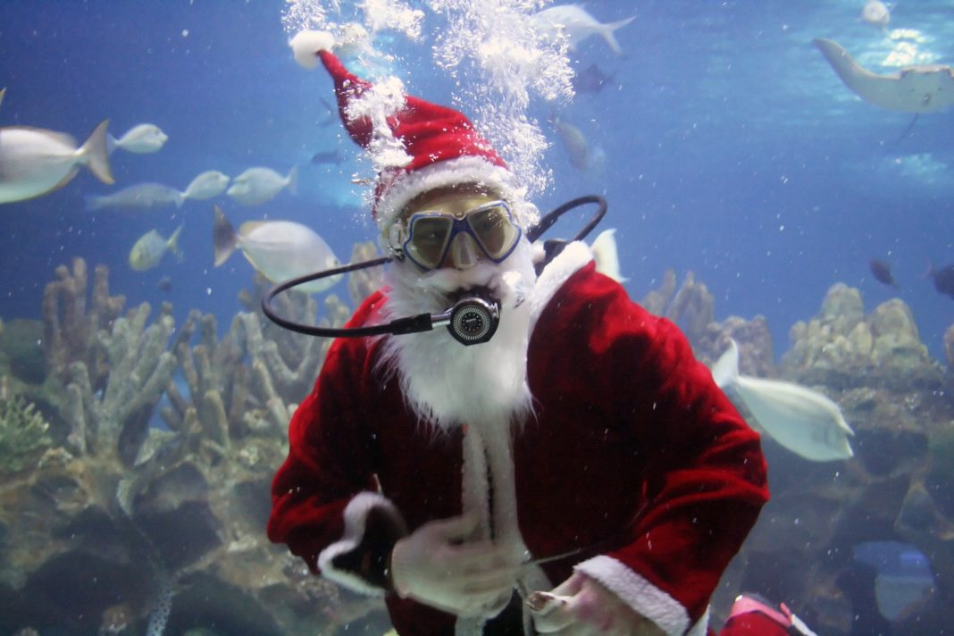 Underwater Santa Clause