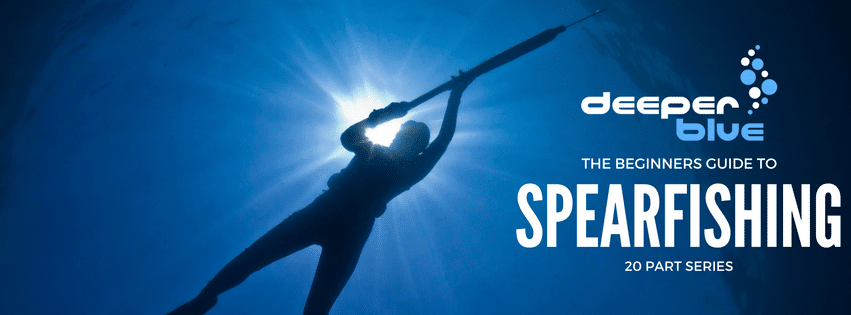 The DeeperBlue.com Beginners Guide to Spearfishing