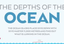 Depths Of The Ocean Hero