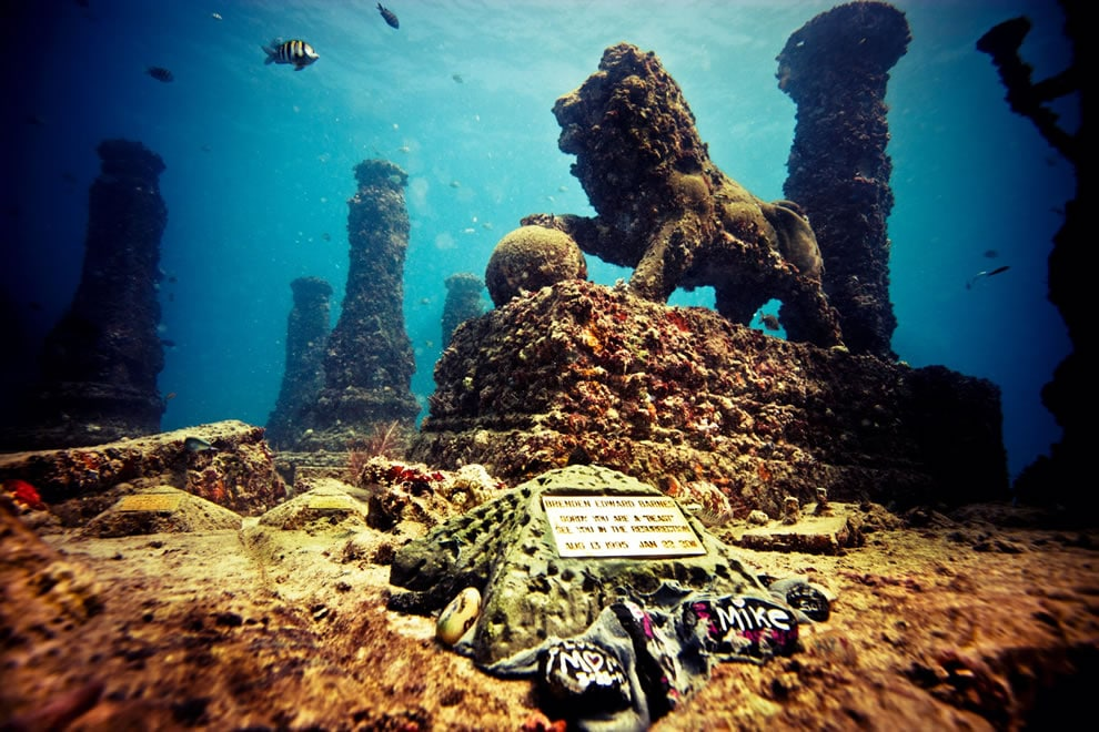 The Entrance to Neptune Reef Photograph supplied by Neptune Memorial Reef