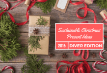 Sustainable Christmas Present Ideas For Divers