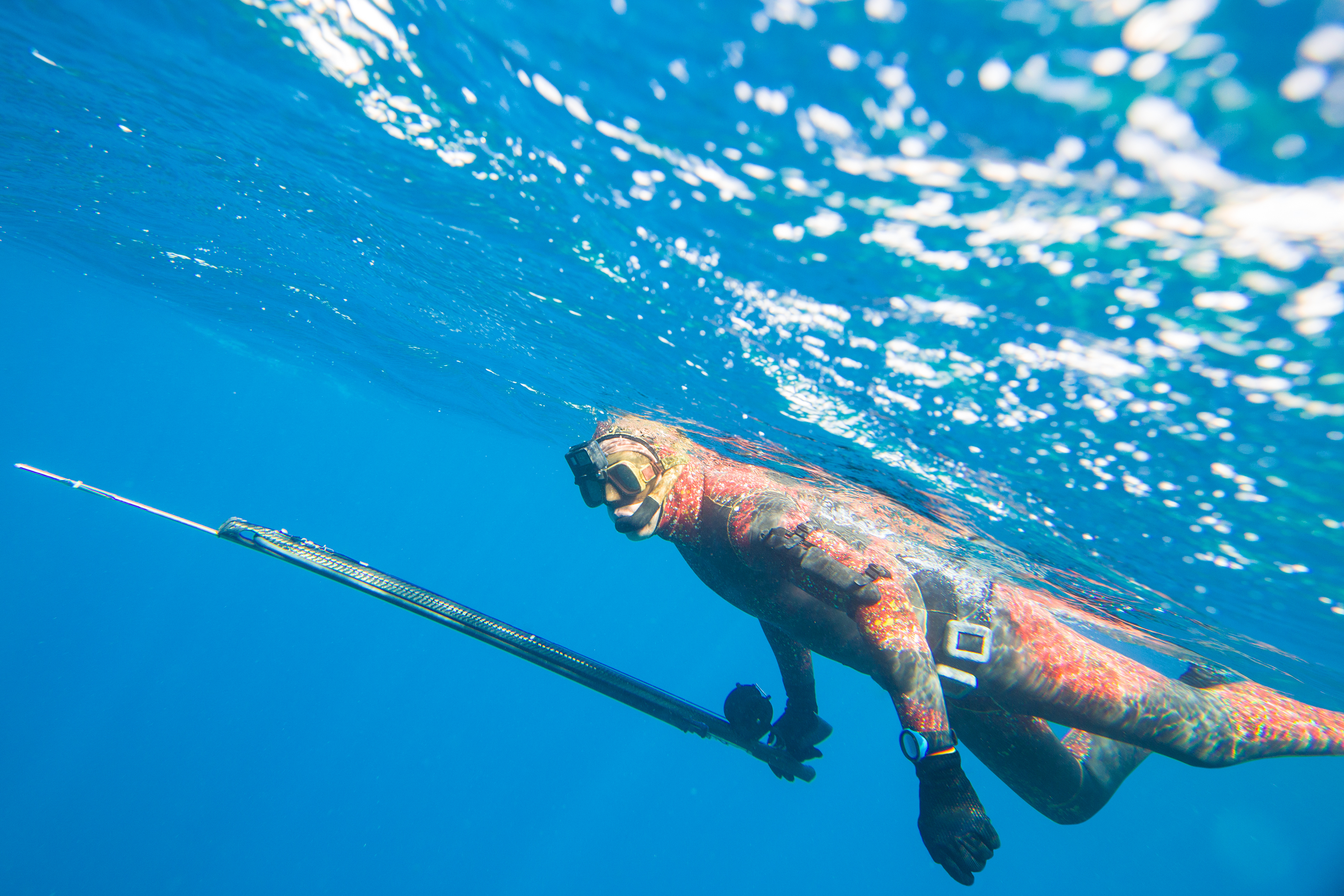 spearfisher rests on the surface of the sea before diving