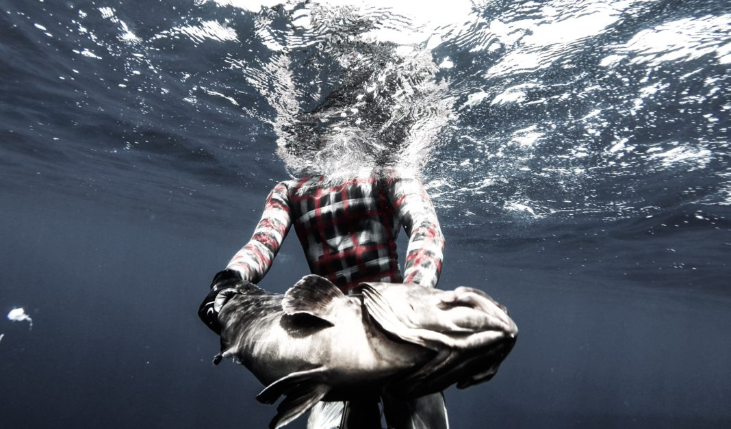 Deep Spearfishing Encyclopedia: Agguato 2