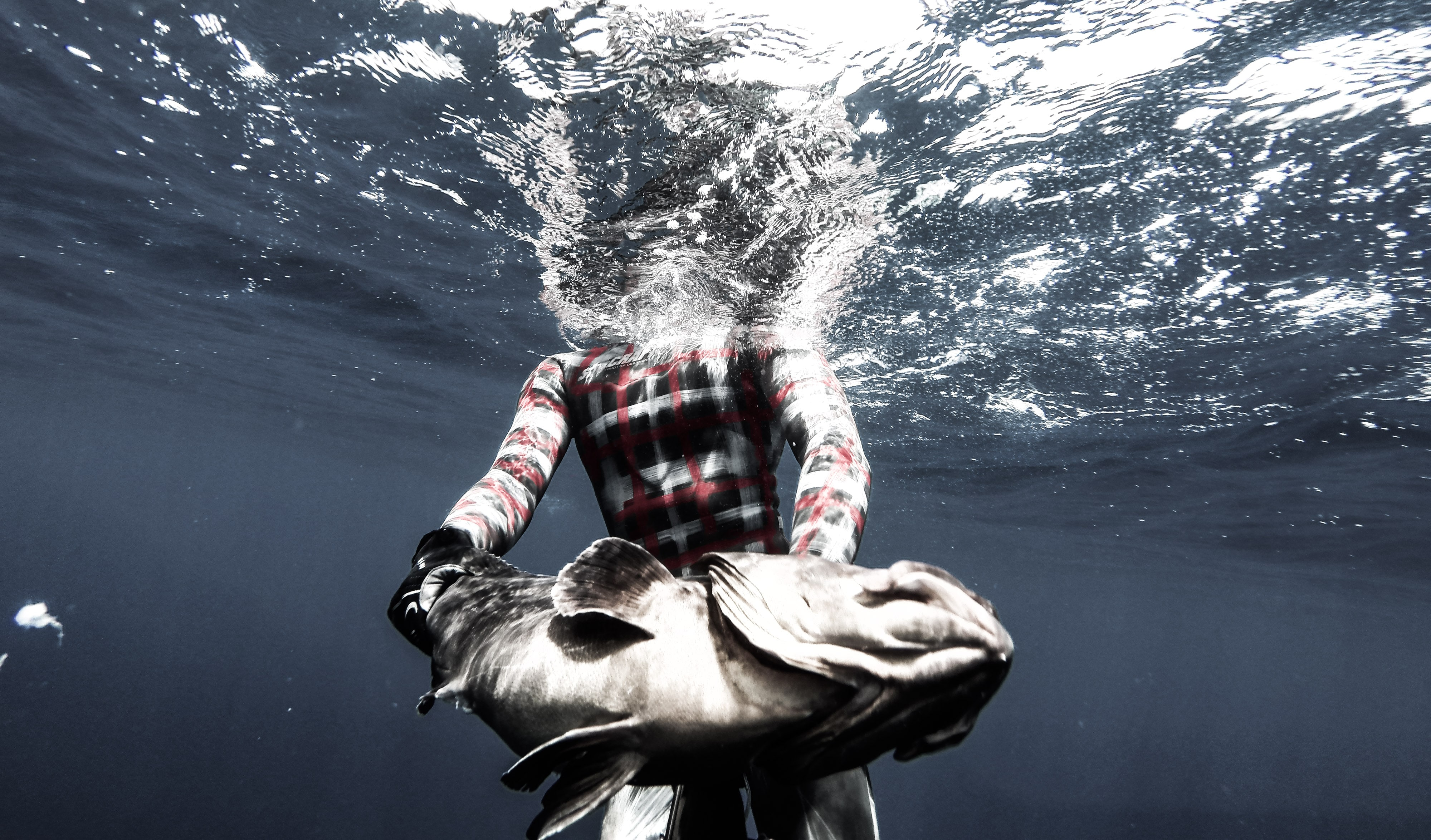 Deep Spearfishing Encyclopedia: Agguato 1