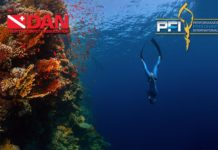 Performance Freediving International & DAN Announce Educational Safety Alliance