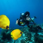 Underwater Photographer diving with camera in the Red sea