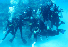 Researchers Check Out Cuban Marine Park