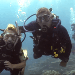 Family Dive Adventures Releases 2017 Kids Sea Camp Schedule