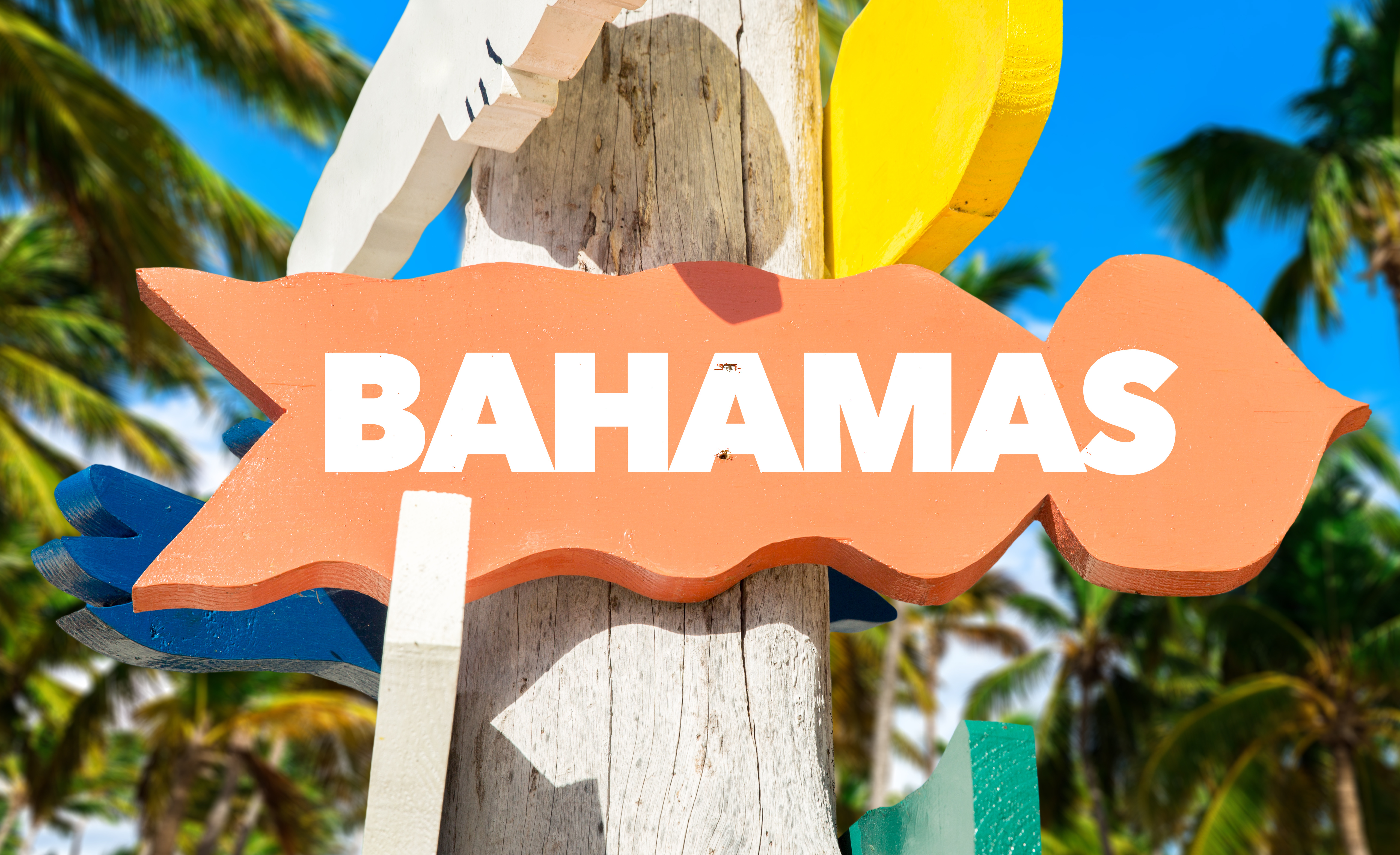 Bahamas signpost with palm trees