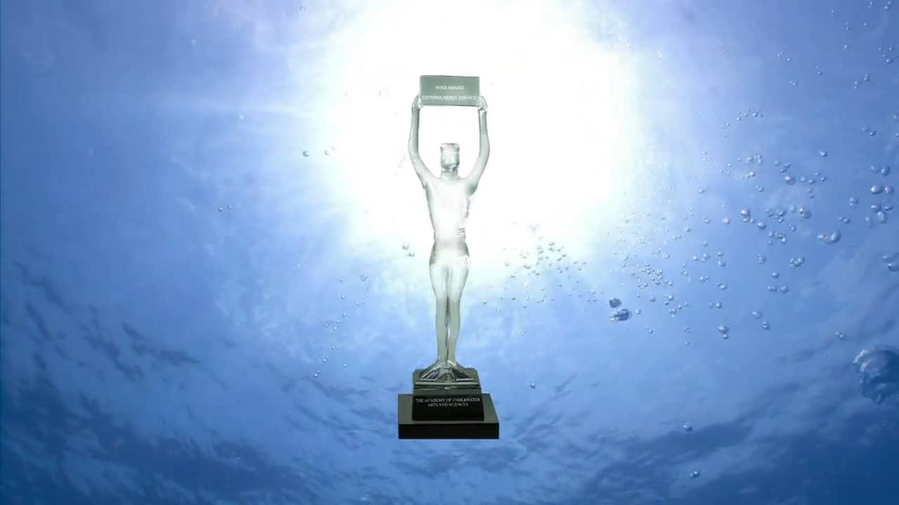 NOGI Awards