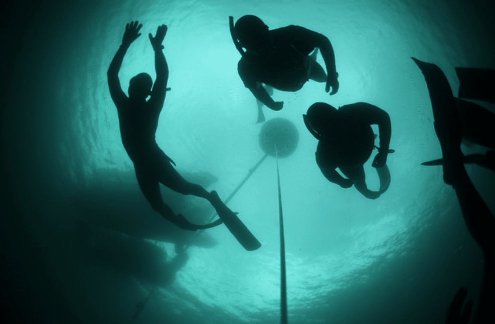 New Zealand Freediving Depth Nationals To Be Held This Month