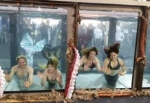 Mermaids at the Great Northern Dive Show