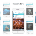 Deepblu Introduces New Social Media Network For Divers
