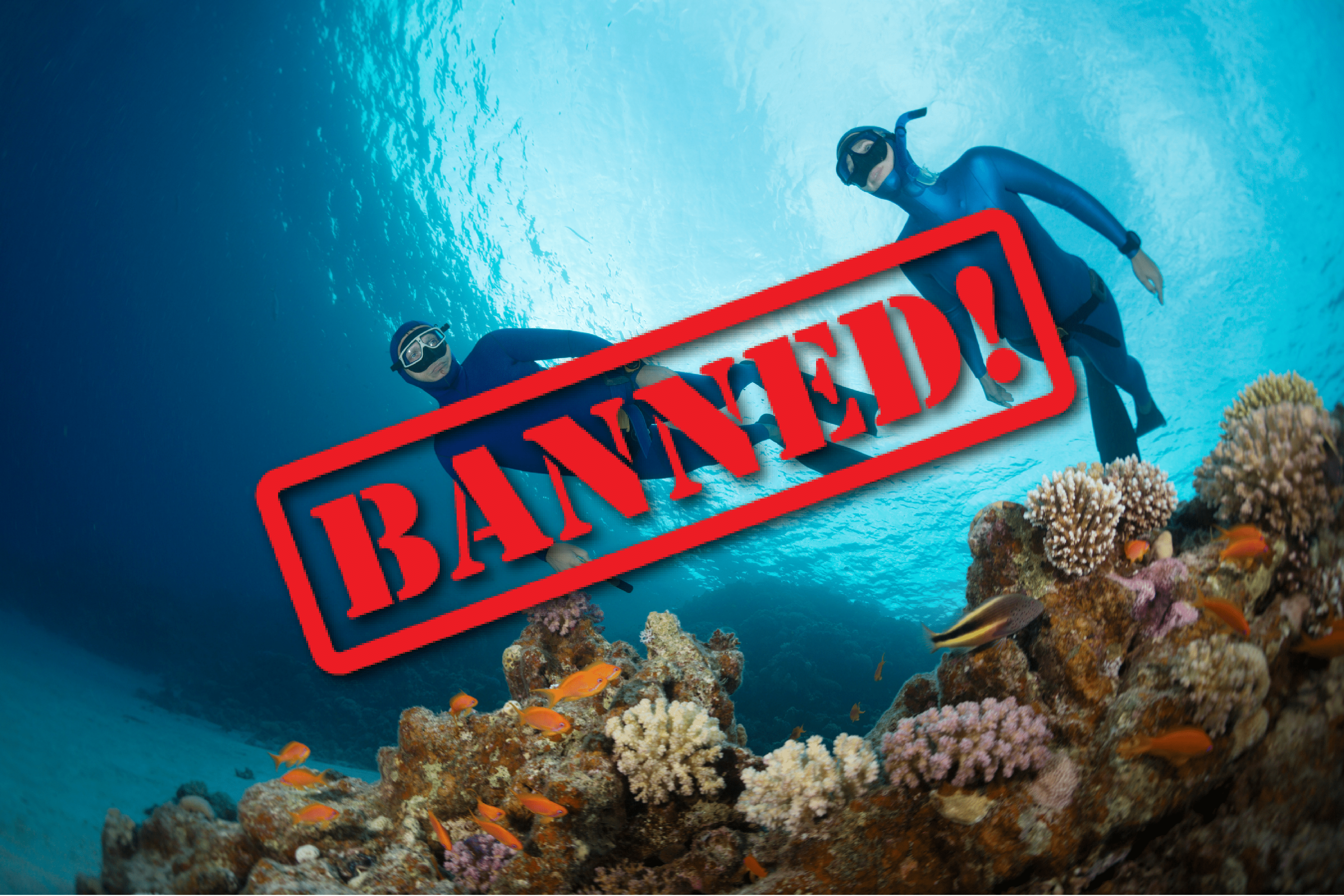 Freediving Banned April 1