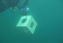 U.K. Company To Build World's First Modular Artificial Reef
